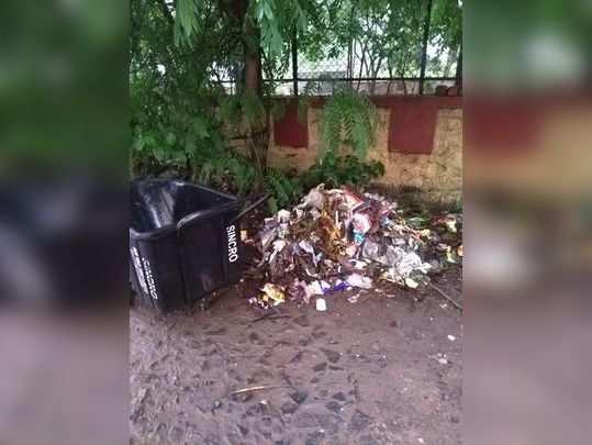 सर्रास कचरा फेकतात