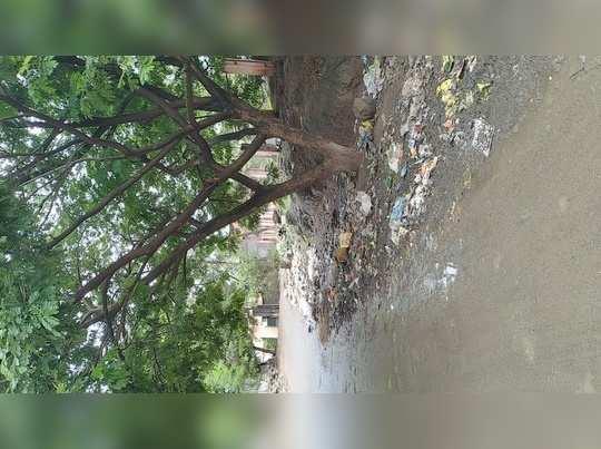 तुकाई टेकडी शेजारी कचराचे साम्राज