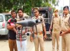 यूपी: 'कांवड़ यात्रा' पर ड्रोन कैमरे से रखी जाएगी नजर