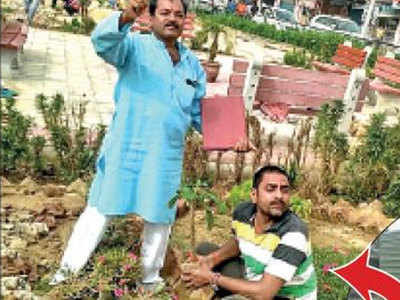 स्थानीय निवासी करते हैं पौधों की देखभाल