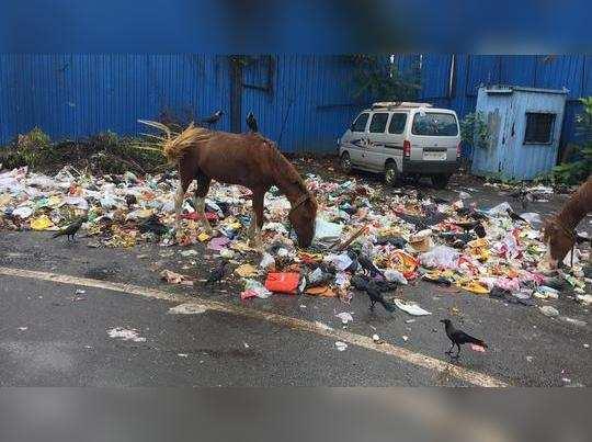 कचरा हटवा