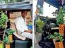 autorickshaw driver prakash kumar is on a green drive