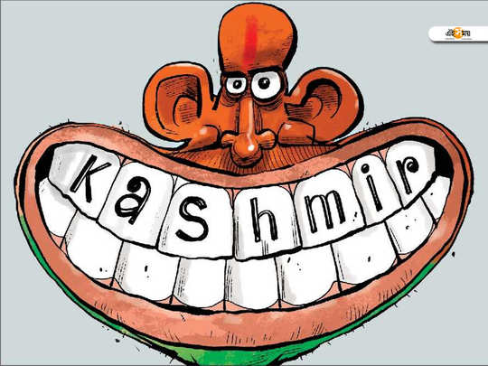 kashmir article 370 and 35a bill