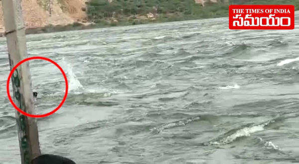 man drowned in nagarjuna sagar waters