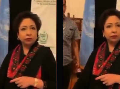 UN में पाक की राजनयिक मलीहा लोधी को पाकिस्तानी ने बताया भ्रष्ट और चोर