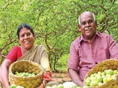 என்னா சண்டை- அரிவாளுடன் வந்த கொள்ளையர்களை முரட்டு அடி அடித்து விரட்டிய வயதான தம்பதி! Tirunelveli-old-couple