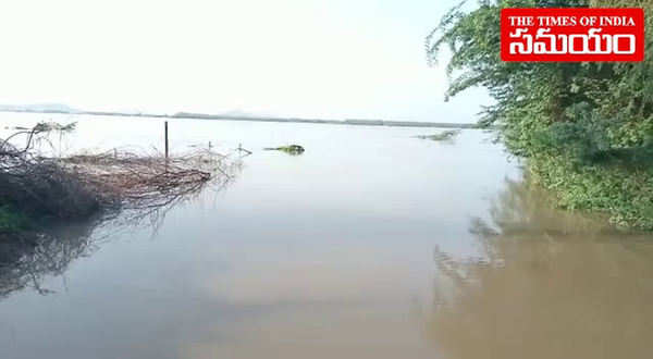floods in krishna district many villages immersed