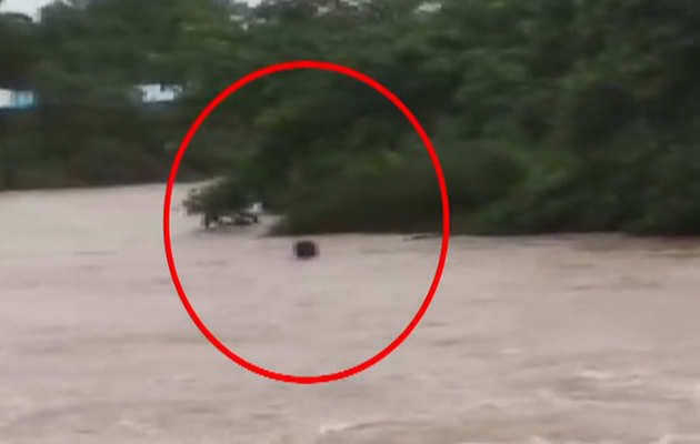 मध्य प्रदेश: राजगढ़ में नदी पार करते समय दो शख्स बह गए