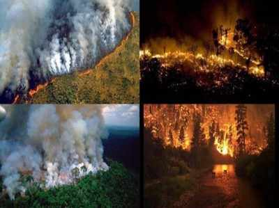 Amazon Wildfires: Amazonian rainforest records raging fires for third straight week