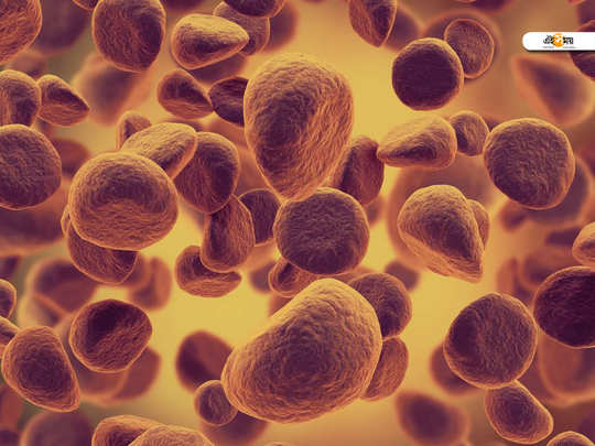 blood cancer causes
