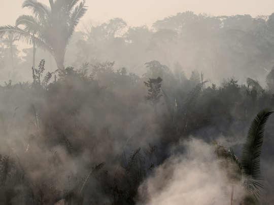 जंगलों में लगी है भयानक आग