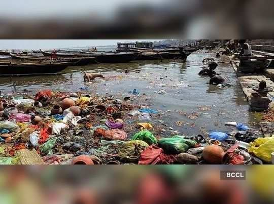 Ganga polluted as deadbodies of cows thrown to the river