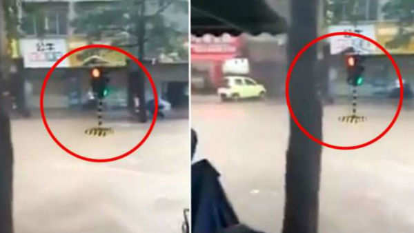 delhi man set fire to his own bike after traffic police imposed fine video goes viral