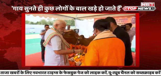 टॉप न्यूज़: गाय पर बोले मोदी, कुछ लोगों के बाल खड़े हो जाते हैं