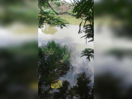 स्वच्छ नदी नाहीच