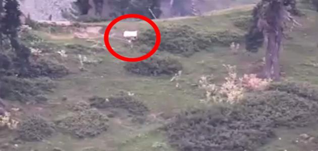 जम्मू-कश्मीर: जवाबी कार्रवाई में ढेर हुए सैनिक, 'सफेद झंडा' दिखाने को मजबूर हुई पाक सेना