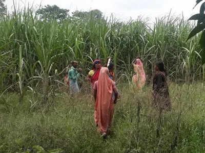 गांव में तेंदुए का आतंक