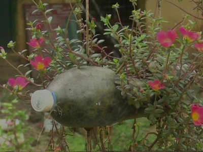 प्लास्टिक की बोतलों से बना बगीचा