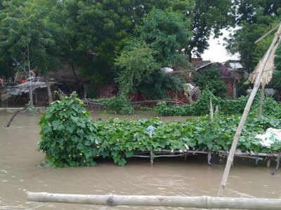 बाढ़ में डूबी फसल