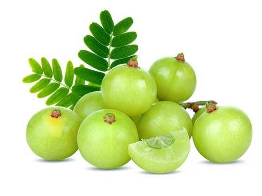 benefits of amla: Amla benefits: தினமும் வெறும் ...
