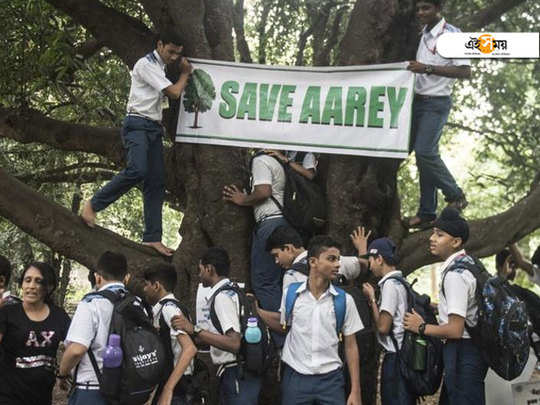 bollywood celebrities express their anger as authorities start cutting aarey forest