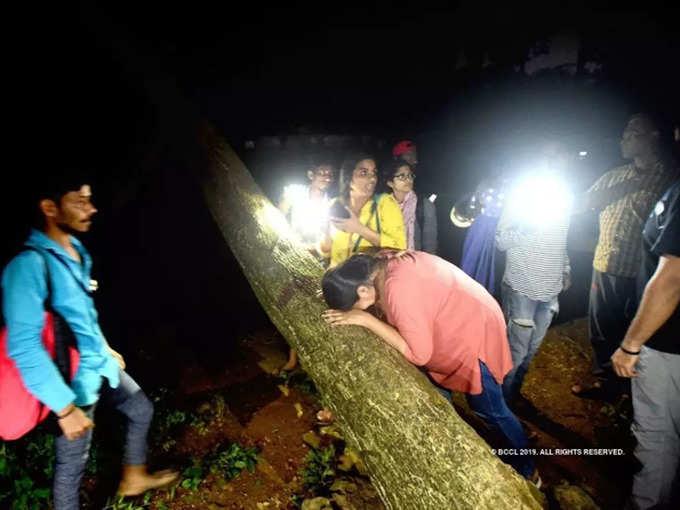 मुंबई: पेड़ से चिपके, आंसू बहे...पर मुर्दा बनने से नहीं रोक पाए