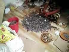 multiple lakhs worth of beggar killed in mumbai accident