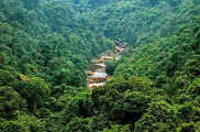 गुजरात से दिल्ली तक बनेगी 'ग्रीन वॉल ऑफ इंडिया', 1400 क...