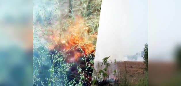 हरियाणा: कुरुक्षेत्र में लगातार पराली जला रहे हैं किसान