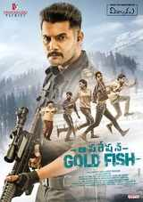 aadi and sasha chettri starrer operation goldfish movie review and rating