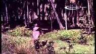MGR Song : தொட்டால் பூ மலரும்.. தொடாமல் நான் மலர்வேன்!