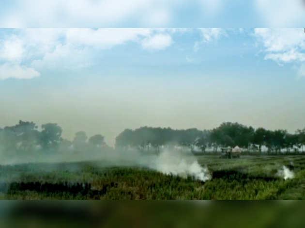 हरियाणा के 115 किसानों के खिलाफ पराली जलाने का मामला दर्ज करने के आदेश