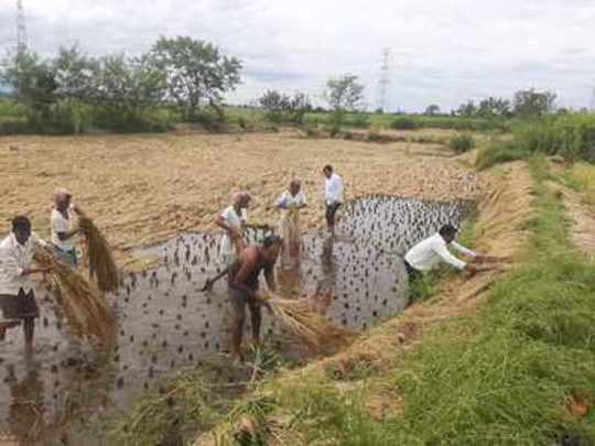 शेतकऱ्याचे अश्रू पुसा