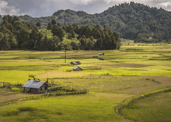 जीरो वैली, अरुणाचल प्रदेश