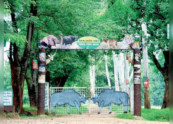बेतला नैशनल पार्क, झारखंड