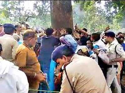 महुआ के पेड़ को चमत्कारी मानकर जुटने लगे लोग