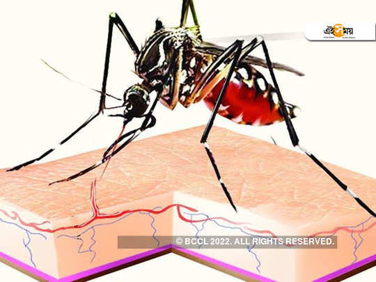Kolkata police constable died of dengue leaving 11 day old child