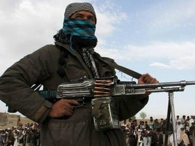 तालिबान को भरोसेमंद भारत-विरोधी तत्व के रूप में देखता है पाकः अमेरिका
