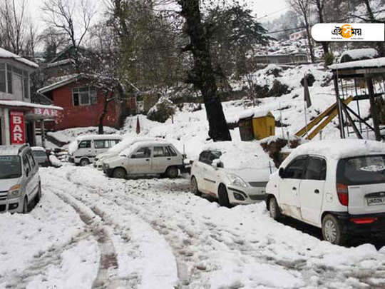 Heavy snowfall in Kashmir valley took lives of four including two army porters