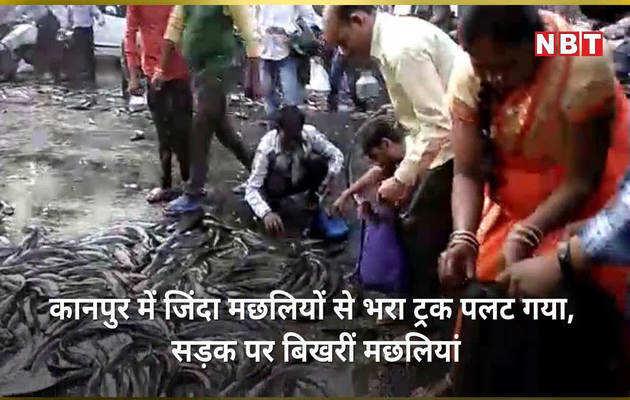 जब सड़क पर बिखरीं मछलियां बटोरकर ले जाने लोग