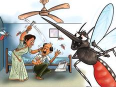 गुजरात: मच्छर काटने पर गुस्साई पत्नी, पति को मूसल से पीटा