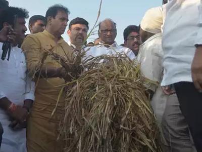 किसानों से मिले थे शरद पवार