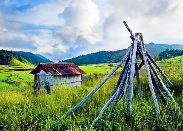 वनलाईफाई के धान के खेत, मिजोरम