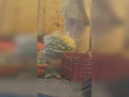 प्लास्टिक पिशव्यांचा वापर