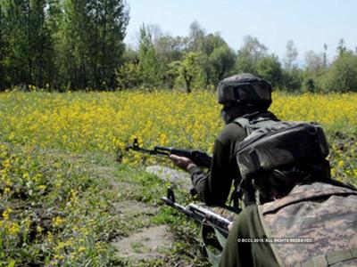 जम्मू-कश्मीर में इस साल आतंकवाद की 594 घटनाएं हुईंः केंद्र