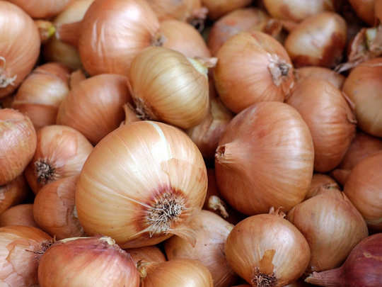 Onion Price Today