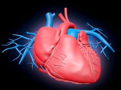 ओरल हेल्थ और दिल की बीमारी