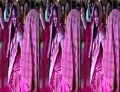 मध्य प्रदेश की मंत्री इमरती देवी के डांस का विडियो हुआ वायरल