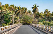 केरल का सबसे ऊंचा पुल अब बनेगा टूरिस्ट स्पॉट...