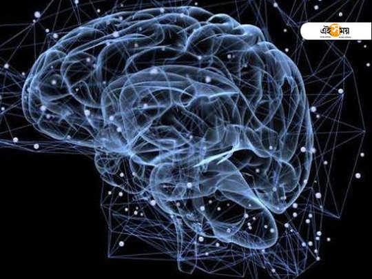 Patna doctors and a team of international researchers identify genes causing schizophrenia